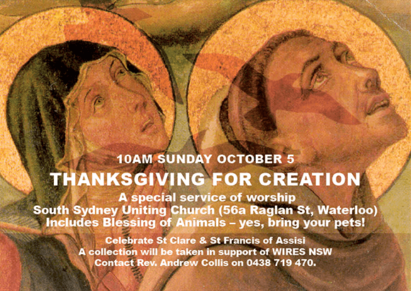 Thanksgiving for Creation